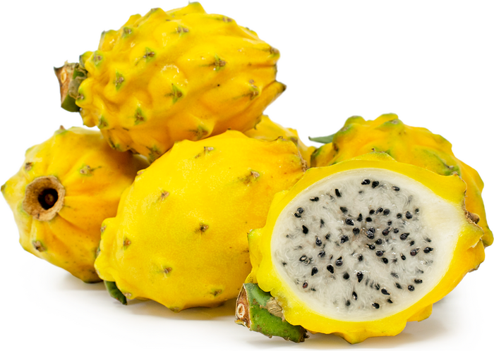 Dragonfruit Yellow (White Flesh)- Each