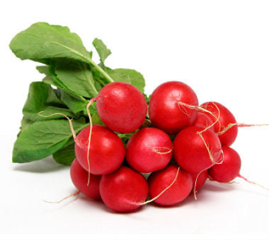 Radish Red - Bunch