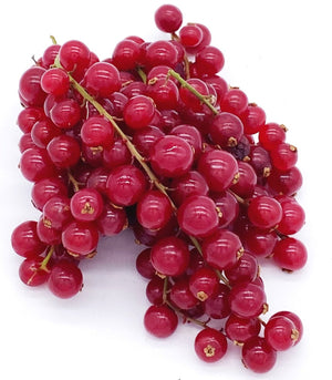 Redcurrants - 125g-Watts Farms