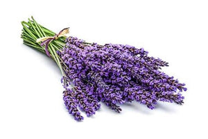Lavender Bunch-Watts Farms