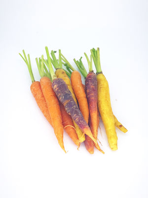 Baby Carrots Rainbow Mix - 200g-Watts Farms