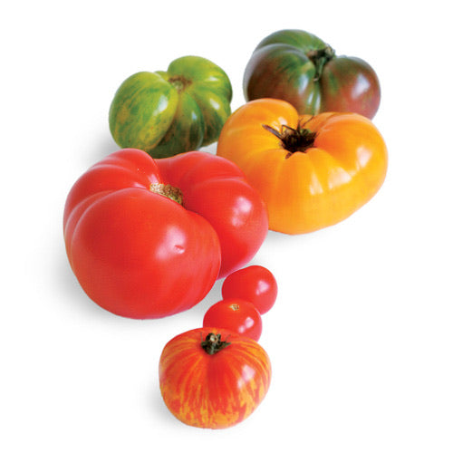 Heirloom Tomato Mix - 500g