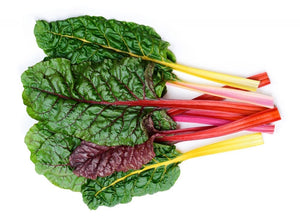 Rainbow Chard - 300g-Watts Farms