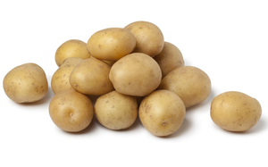 Mid Salad Potatoes - kg-Watts Farms