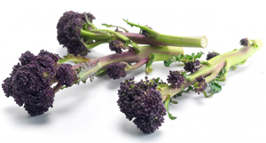 Purple Sprouting Broccoli - 250g-Watts Farms