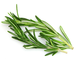 Rosemary 40g-Watts Farms