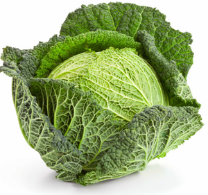 Cabbage Savoy - Each-Watts Farms
