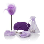 Berman Shades of Purple Playroom Kit SE9760103