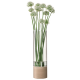 LSA Lotta Vase With Ash Base, Tall