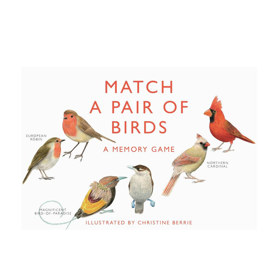 Match a Pair of Birds; A Memory Game