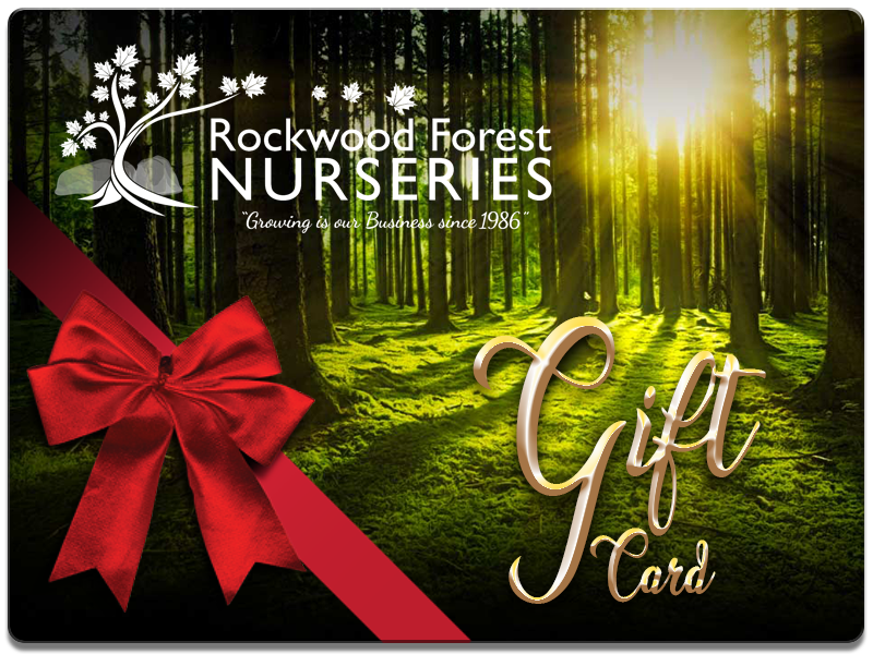Rockwood Forest Nurseries - Gift Card