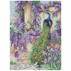 The Peacock - Anchor Maia Cross Stitch Kit 5678000\1027