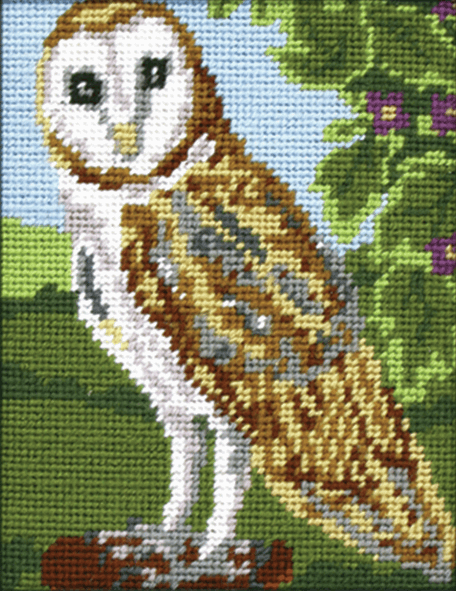 Owl -  Anchor Starter Tapestry Kit MR925
