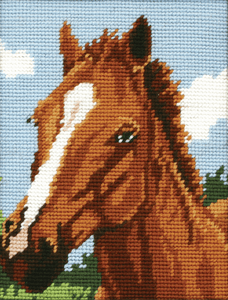 Brown Horse -  Anchor Tapestry Kit: Starter Level MR929