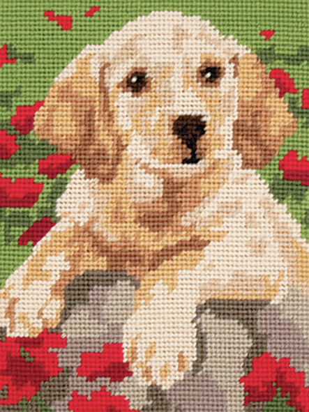 Labrador Puppy Dog-  Anchor Tapestry Kit: Starter Level MR941