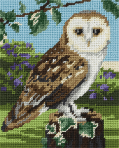 Owl -  Anchor Tapestry Kit: Starter Level MR951