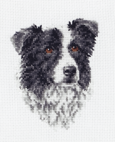 Border Collie - Anchor Cross Stitch Kit PCE219