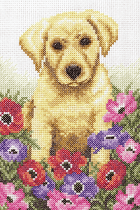 Puppy  - Anchor Cross Stitch Kit PCE759
