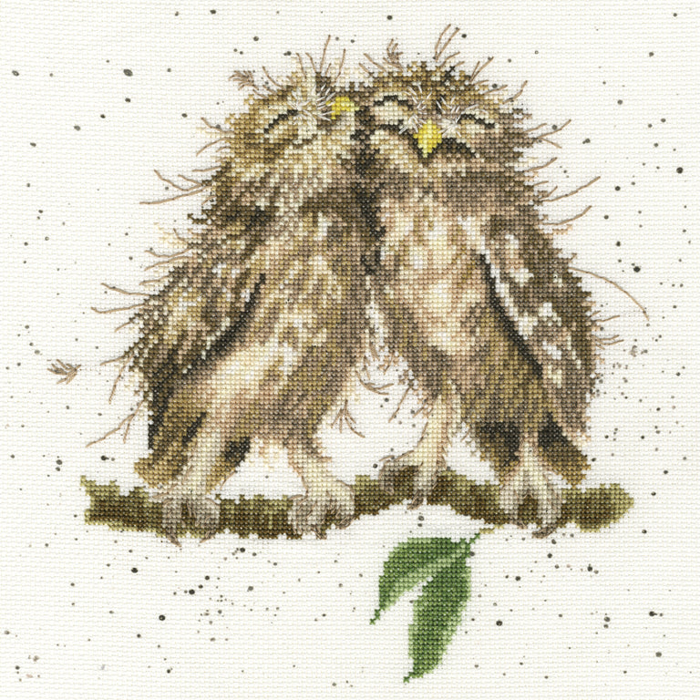 Birds of a Feather - Bothy Threads Cross Stitch Kit XHD36