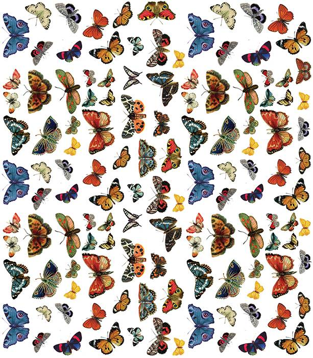 Craft Consortium Flutter Of Butterflies Decoupage Papers (3 Sheets) CCDECP210