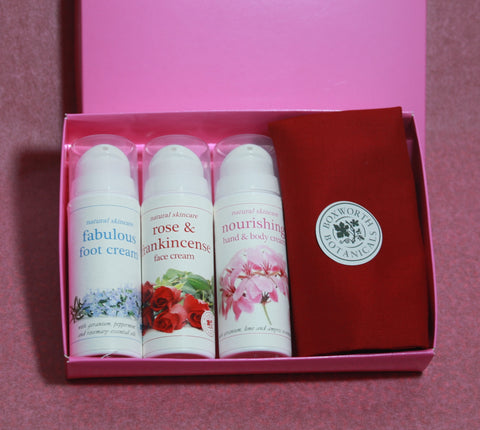 A collection of natural creams for hands face and feet
