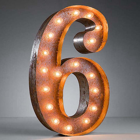 "Number 6 - 24"" Vintage Inspired Light"