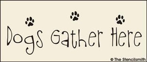 Dogs Gather Here
