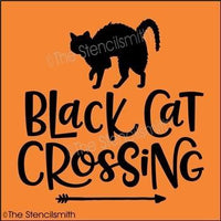 5482 - black cat crossing