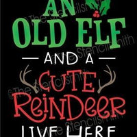 6367 - An old elf and a cute reindeer