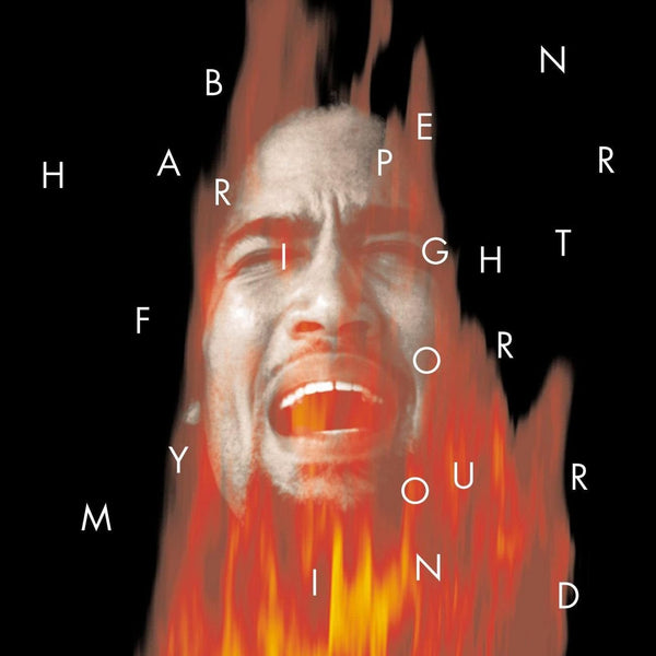 Ben Harper - Fight For Your Mind RSD