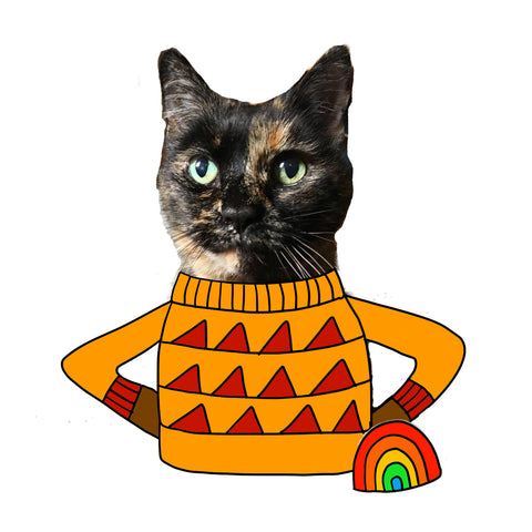 Gretel the cat wearing an illustrated jumper