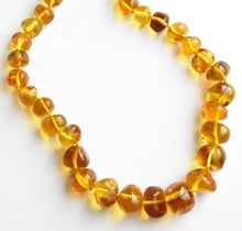 Load image into Gallery viewer, Golden Yellow Amber Necklace with Inclusions and Fossils