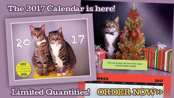 Image shows the 2017 Oskar & Klaus calendar. There's also an image of the inside of the calendar with the photo from December — Klaus sitting proudly beside a Christmas tree surrounded by presents.