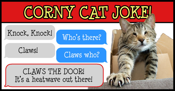Cat joke reads: Knock, Knock. Who's there? Claws. Claws who? Claws the door! It's a heatwave out there!
