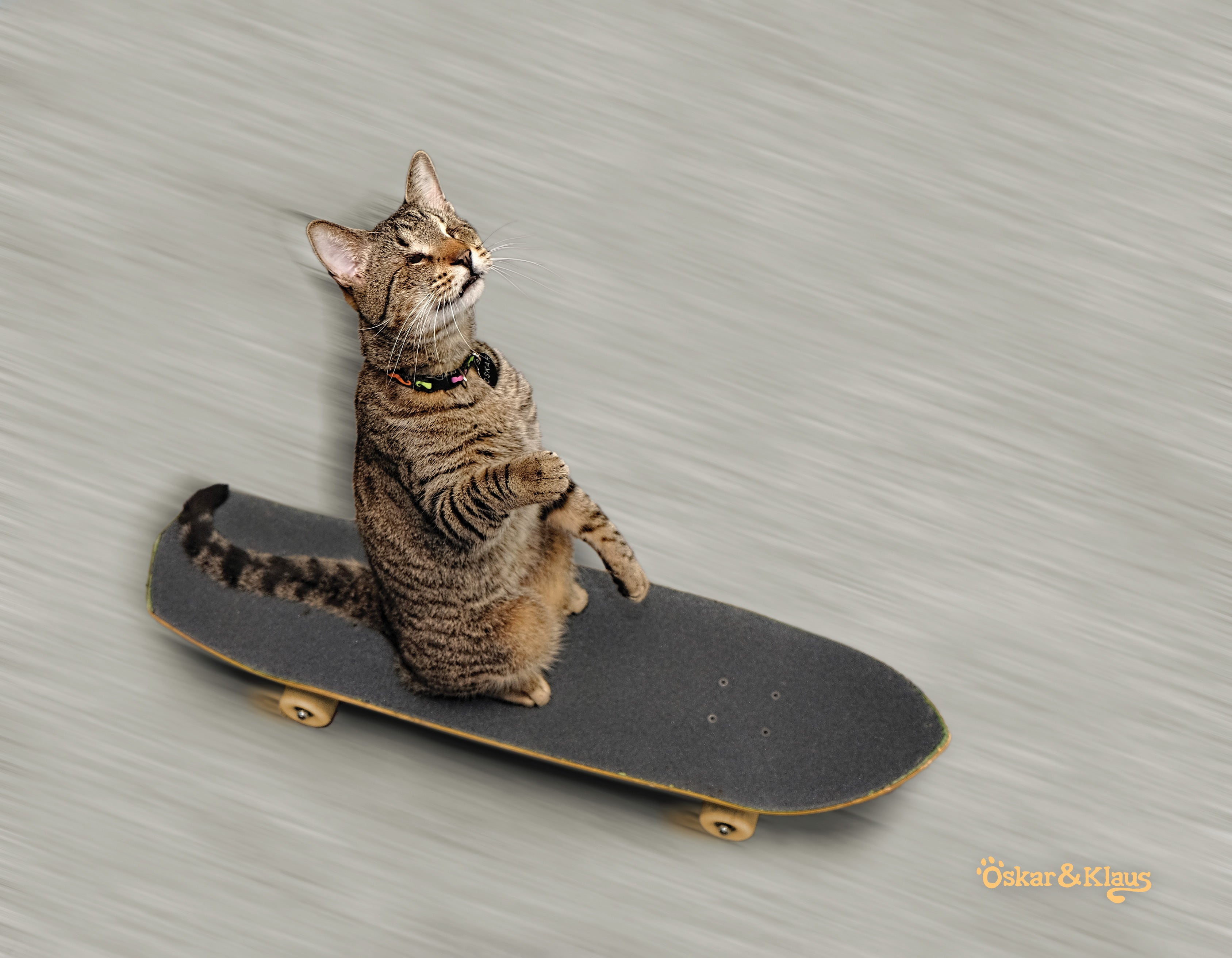 Oskar is riding a skateboard!