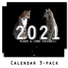 SALE! 3-Pack: Klaus & Juno 2021 12-month Wall Calendars