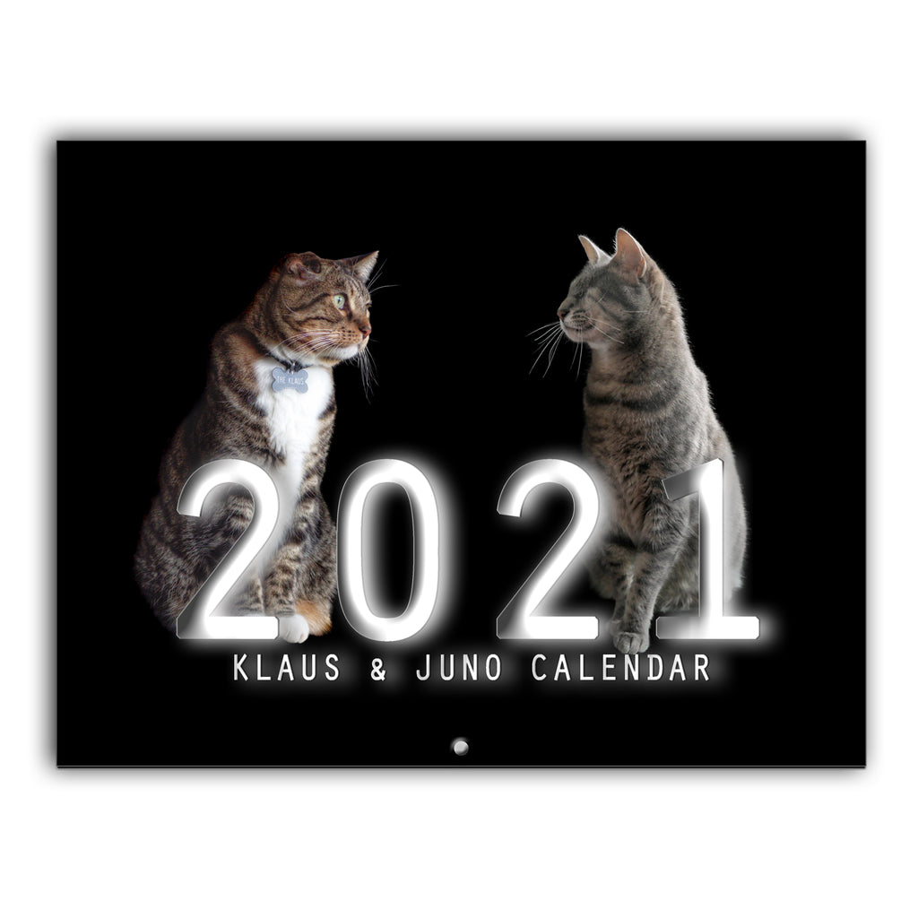NEW! Klaus & Juno 2021 12-month Wall Calendar