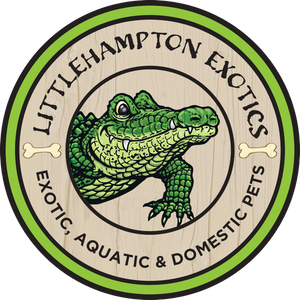 Littlehampton Exotics