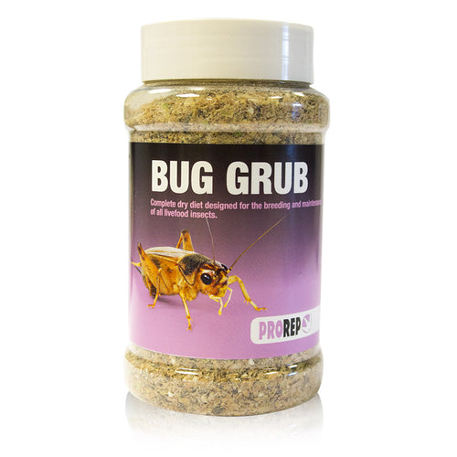 Pro Rep Bug Grub - Littlehampton Exotics