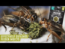Load and play video in Gallery viewer, Arcadia Earth Pro Insect Fuel