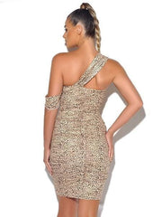 Kitty Kat Leopard Dress - BLK PYTHON BOUTIQUE