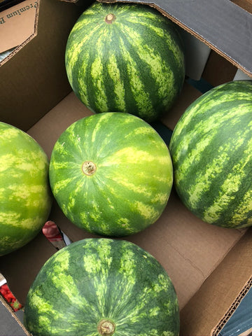 Watermelon - HGFD Produce