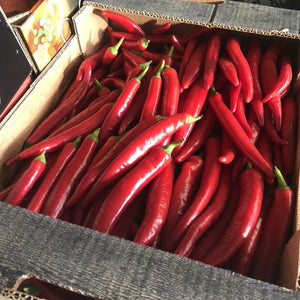 Red Chillis x 4 - HGFD Produce