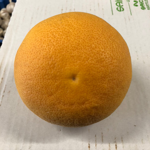 Red Grapefruit - HGFD Produce