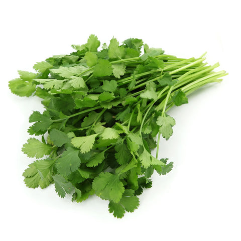 Fresh Coriander - Langthorpe Farm Shop