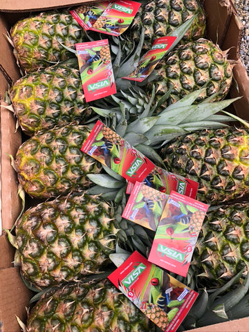 Pineapple - HGFD Produce