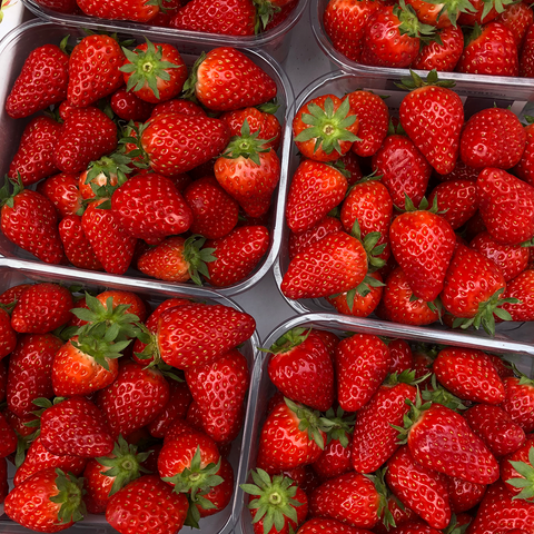 Strawberries Punnet - HGFD Produce