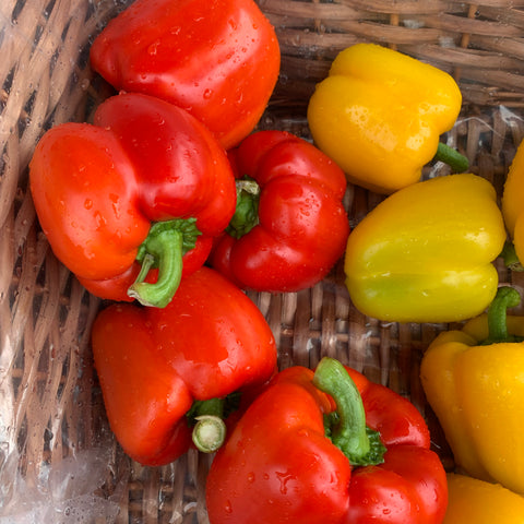 Red Peppers each - Langthorpe Farm Shop