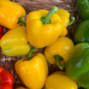 Yellow Peppers each - Langthorpe Farm Shop
