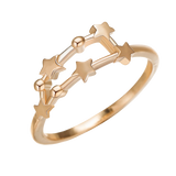 BAGUE CONSTELLATION CAPRICORNE - Zodiaque Shop
